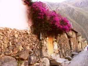 Cuzco 8